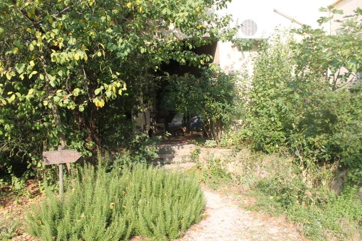 Propriété Vallée de la Cèze (3)